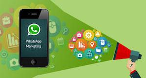Como criar uma campanha de vendas através do whatsapp – Whatsapp Marketing